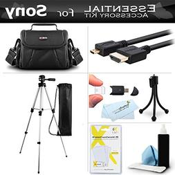 Accessory Kit For Sony HDR-CX220 HDR-CX230 HDR-PJ230 HDR-CX3